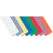 magnetoplan® ferrocard-Etiketten - HxB 10 x 50 mm, 3 VE à 205 Stk - grün