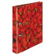 Herlitz Ordner maX.file A4 5cm Erdbeeren