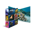 HERMA Motiv-Ordner A4 Animals - Meerestiere
