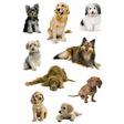 HERMA Poesie-Etikett, Schmuck-Etikett DECOR Hundefotos