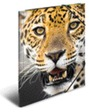 HERMA Sammelmappe A3 PP Leopard