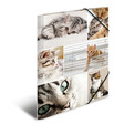 HERMA Sammelmappe A4 Pappe Katzen