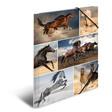 HERMA Sammelmappe A4 Pappe Pferde