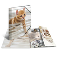 HERMA Sammelmappe Glossy Tiere A4 PP Katzen