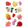 HERMA Schmuck-Etikett DECOR Rosenblüten