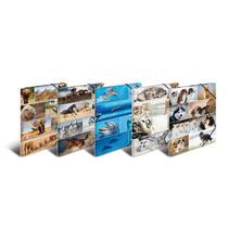HERMA Sortiment Sammelmappen A3 Animals Karton - 10 St. sortiert