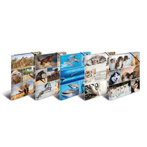 HERMA Sortiment Sammelmappen A4 Animals Karton - 10 St. sortiert
