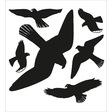 HERMA Warnvögel, Fensterbild schwarz