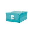 Leitz Archivbox Click & Store Groß