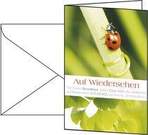 Sigel Glückwunsch-Karten (inkl. weiße Umschläge)